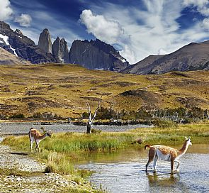 The best of Torres del Paine and Patagonia - Full
