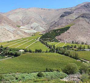 Excursión Valle del Elqui