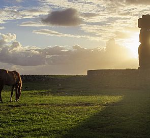 Easter Island Horseback Riding