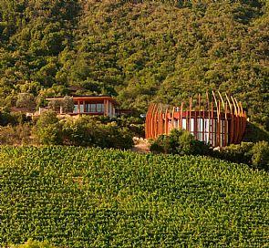 Ruta del vino: Viña Lapostolle y Santa Cruz