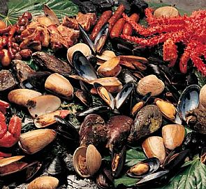 Tour gastronómico por la isla de Chiloé