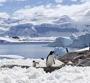 Antarctica: unexplored territory