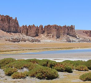 The unforgettable tour in San Pedro de Atacama: Salar de Tara