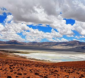 Excursion through Salar del Huasco National Park