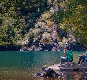 Full Day al Parque Nacional Alerce Andino