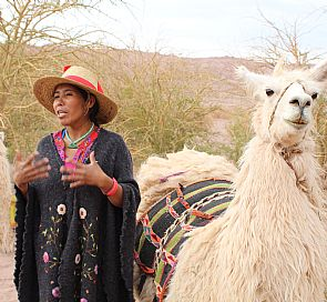 Ancestral Caravan in the Atacama Desert Tour