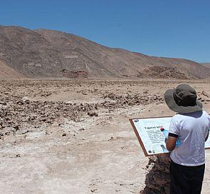 Trekking through the geoglyphs from Pintados