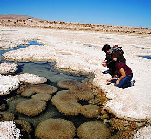 Tour through the Victoria saltpeter, Salar de Llamara and the Tamentica petroglyphs