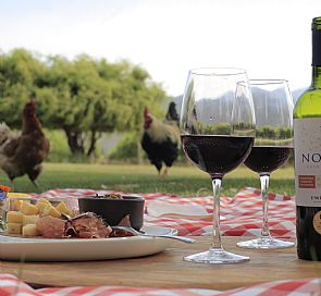 Tour thgough Emiliana vineyard with wine pairing