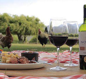 Tour pela vinícola Emiliana com emparelhamento de vinho