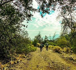 Trekking Alto del Naranjo in Santiago