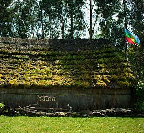 Dormir en ruca y cultivar con permacultura: así se vive en una comunidad Mapuche hoy en día