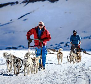 Mushing Day with Husky Dogs