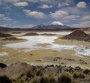 Connect with the mysticism of the desert. A trip to the Chilean Altiplano