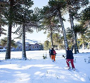 Malalcahuello, the perfect forest village for winter getaways