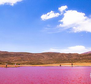 Laguna Roja: Meet the mysterious blood lagoon in Northern Chile