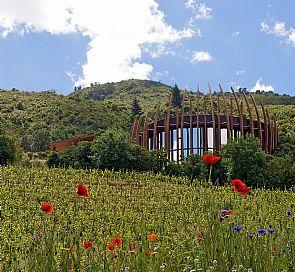 Ruta del vino: ¿Qué valles vitivinícolas conocer en Chile?