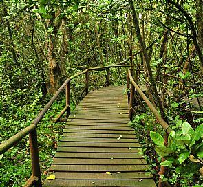 Parque Nacional Bosques de Fray Jorge