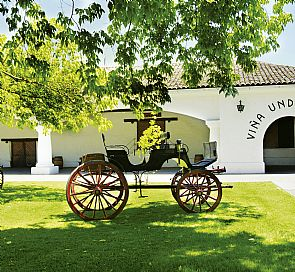 Undurraga Winery Tour