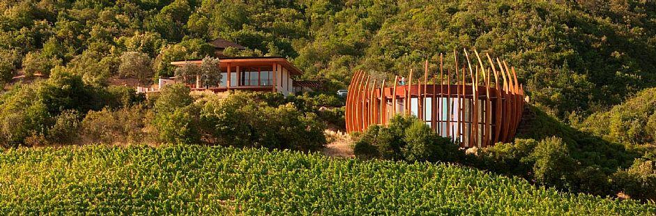 Wine Route: Lapostolle and Santa Cruz Vineyard