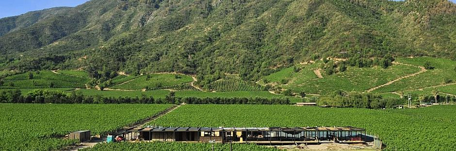 Ruta del vino: Tren al Valle de Colchagua