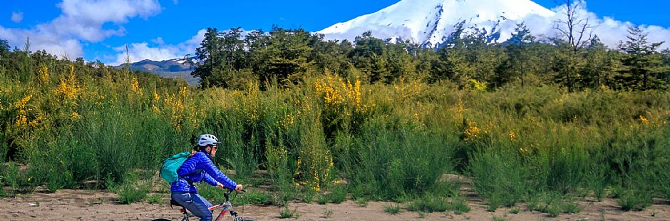Cycling trip on the llanquihue lake