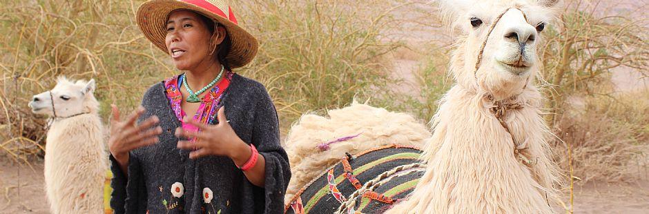 Tour Caravana Ancestral en el Desierto de Atacama