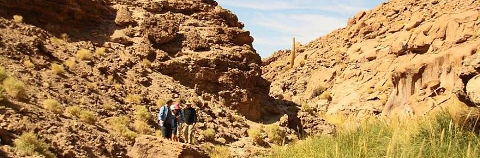 Trekking from Quezar to Puritama thermal springs