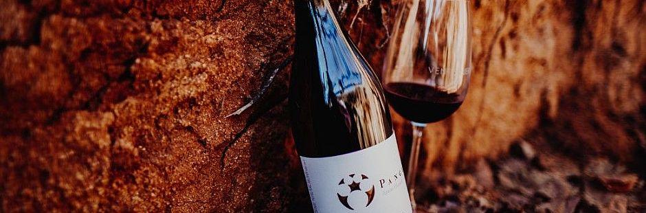 Picnic at Ventisquero vineyard