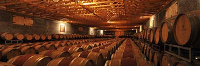 Archaeological tour through San Esteban vineyard