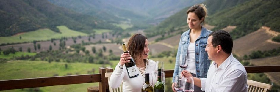 Tour through Ventisquero vineyard