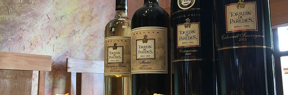 Tour through Torreón de Paredes vineyard