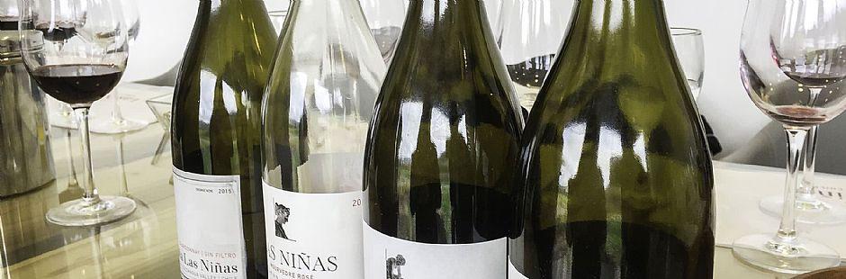 Tour through Las Niñas vineyard