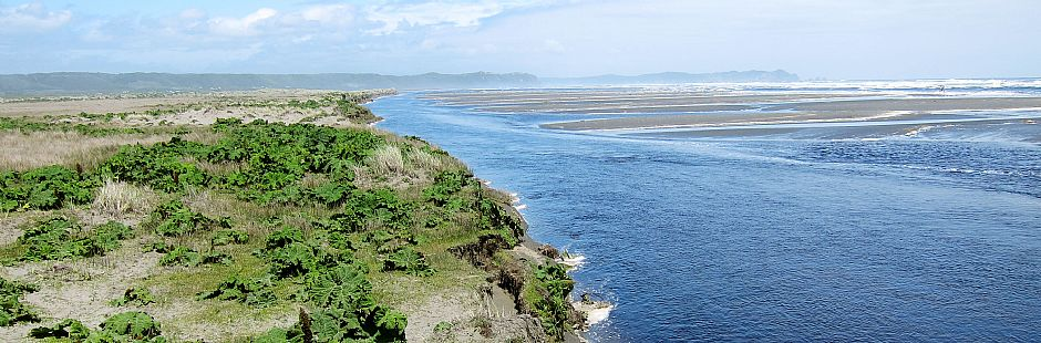 Chiloe National Park