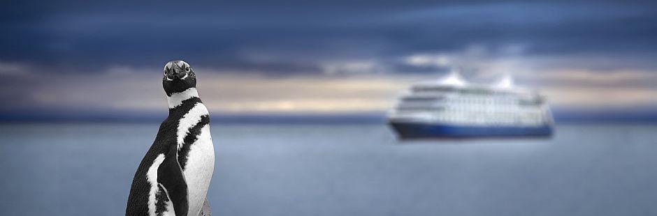 Navegación a Isla Magdalena
