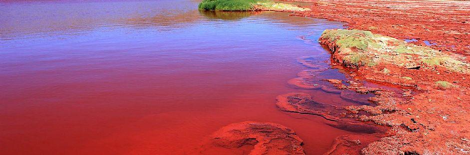 Excursión a la Laguna Roja