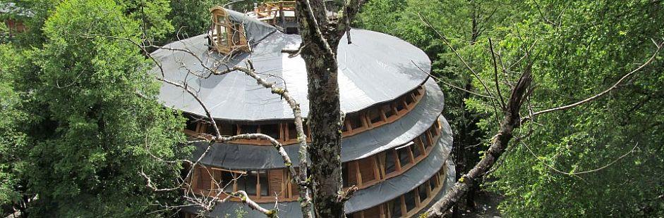 Reino Fungi Lodge