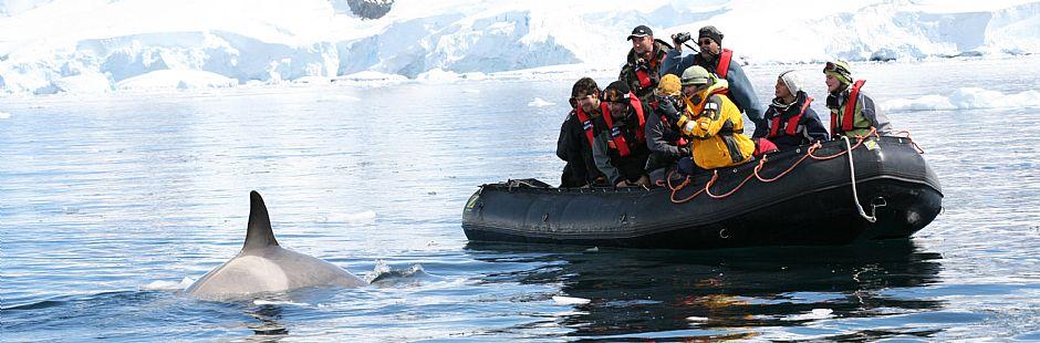 Programa para visitar La Antártica