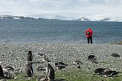 Log book of an adventure cruise to Antarctica